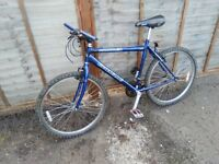 "Adult mountain bike 26"" wheels medium frame full working order"