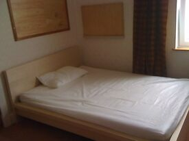 Double room available for student