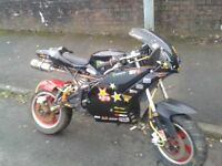 x19 superbike pocket bike 125cc