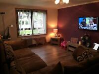 1 up 1 down 2 bed ground floor looking for 2-3 bed semi