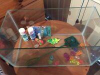 Small Starter Fish Tank