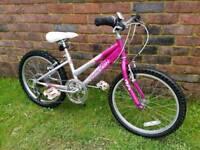 Girls Raleigh mountain bike 20inch wheels