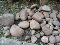 FREE Decorative Scottish cobbles for garden