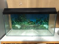 Fish tank 3ft with accessories
