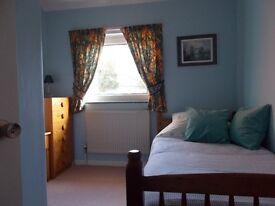 Single Room to Rent in Kennington