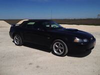 2002 Ford Mustang GT PLEASE SHOP & COMPARE