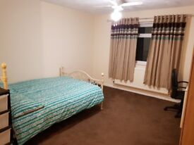 Extra Large En-suite Double Room in a Lovely House