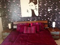 Self Catering holiday rental modern quiet apartment in Edinburgh
