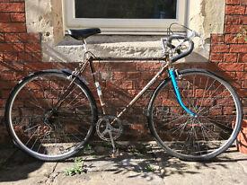 """Carlton Racer/ Road Bike 21"""" frame"""