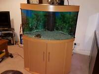 Jewel corner fish tank