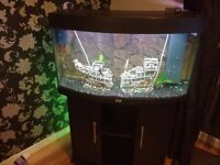 Rio 180L Aquarium With Stand - Complete Setup Including Large Sunken Galleon