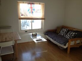 large one bedroom flat in Deptford to rent