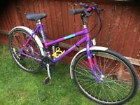 Retro Raleigh lady's bike £30