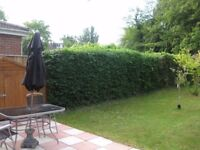 Self catering apartments with garden in South Cambridge available for short-let holiday