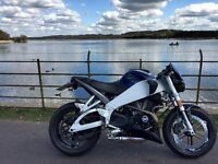 Buell XB9SX Lighning City X Stunning Condition
