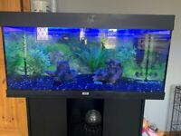 180L Fish Tank and Stand