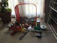 Attractive 30l fish tank, plus pump, filter and accessories