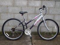 ladies bike 26'' raleigh