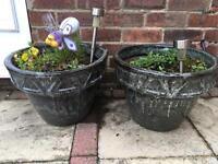 2 big green pots planters