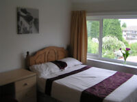 Double room rent all inclusive Available November