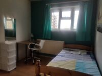 Single room to let............