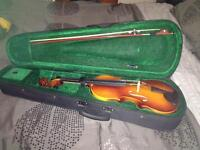 Violin with the case