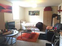Ground floor studio flat - private landlord & pets considered