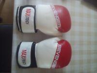 Revenger Boxing Gloves Punch Bag Pro 8oz