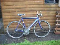 Gents Hybrid Carrera Gryphon lightweight bike 58cm.Shimano 21 gears.Schwalbe anti puncture tyres.