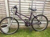 Raleigh ladies bike