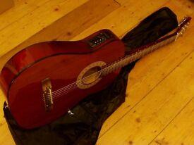 electro acoustic guitar inc gigbag