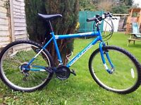 """Mountain bike 26"""" wheels ready to go like new use once or twice just been sitting in the shed"""