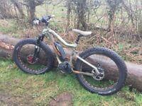 Electric Bike (Haibike) Fat Six with Bosch motor