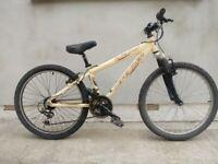 Junior Mountain Bike in good conidition.
