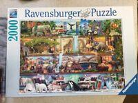 2000 piece Ravensburger jigsaw