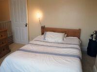 Horfield. Double bedroom in bright spacious friendly house (garden + parking + garage).