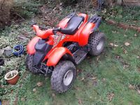 Aeon cobra 100cc Quad NOT LT50 LT80 MINI MOTO DIRT BIKE BMX MOTOCROSS KTM CRF