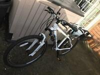 Carrera mens mountain bike
