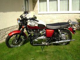 Triumph Bonneville T100 for sale. 2012. low miles. Extras. Fantastic condition