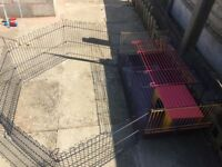 Rabbit cage and run