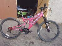 SABRE ESCAPE MTB bike