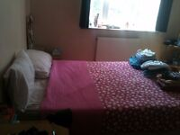 Large double room in female flat share in trendy Brixton, all bills and bike storage included