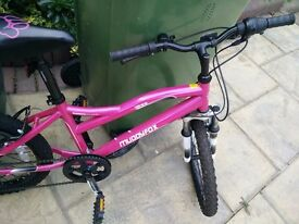 "20"" Muddyfox BIke for sale"