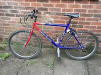 ADULT BIKE FOR SALE / FREE Lock