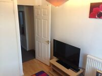 Single room,clean and quiet house,Harlow