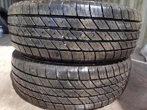 195 65 15 two all season tires