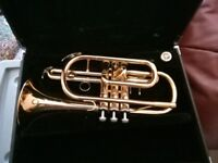 Beautiful Yamaha Bb Cornet YCR2330ii, gold lacquered, perfect condition