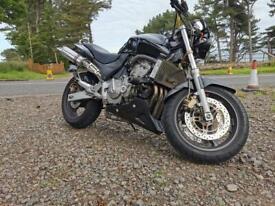 Honda Hornet - CB600