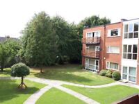 Large 2 bedroom apartment to let