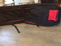 Double ski bag